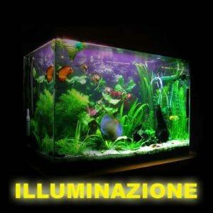 acquario illuminazione